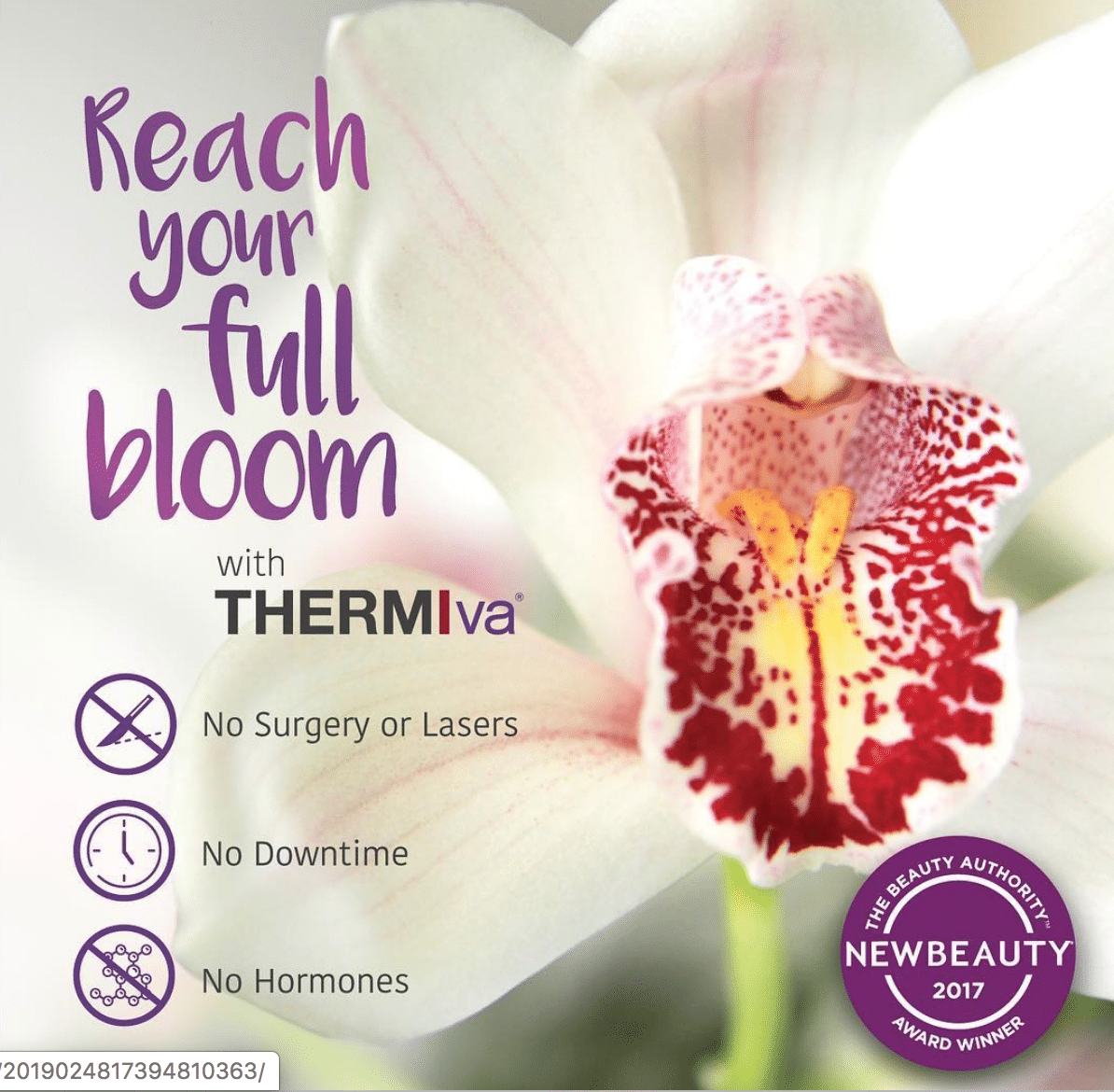 Reach your full bloom